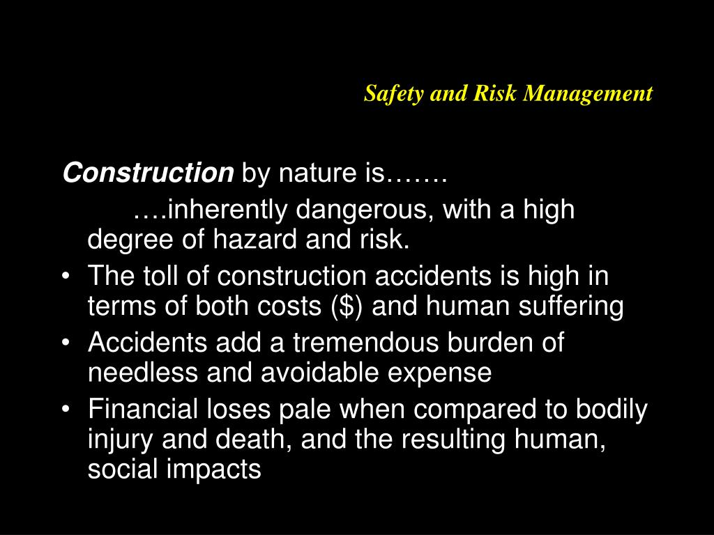 safety and risk management l.