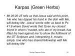 karpas green herbs24
