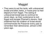 maggid33