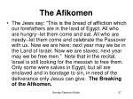the afikomen27