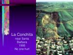 la conchita near santa barbara 1995 no one hurt
