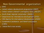 non governmental organization
