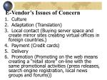 e vendor s issues of concern