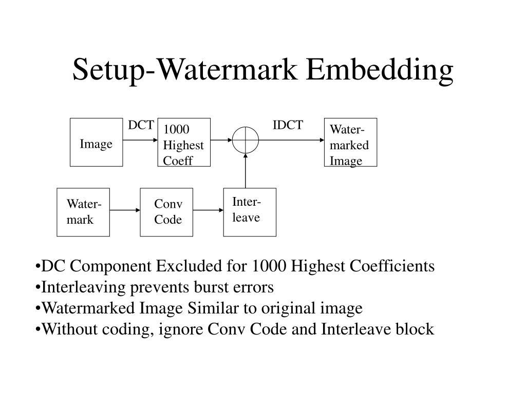 Setup-Watermark Embedding