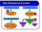 why photostory3 cmap
