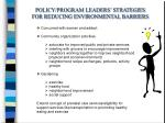 policy program leaders strategies for reducing environmental barriers