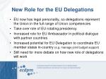 new role for the eu delegations
