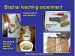 biochar leaching experiment