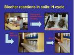biochar reactions in soils n cycle