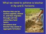 what we need to achieve is biochar in ap and e horizons