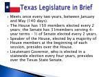 texas legislature in brief