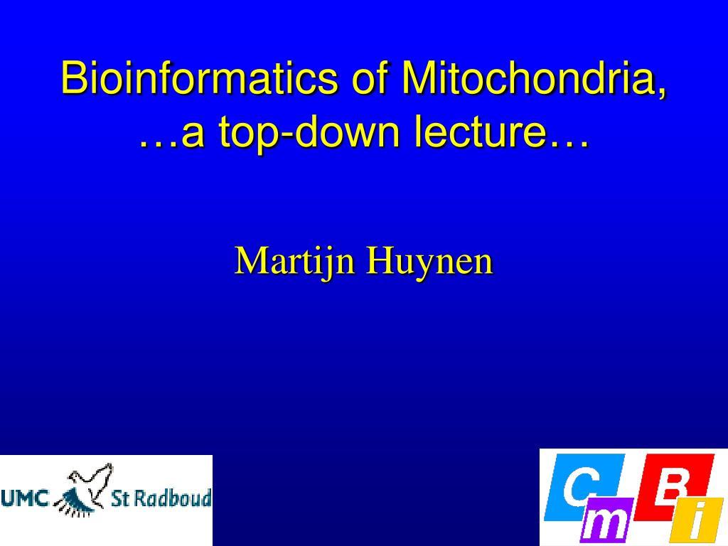 bioinformatics of mitochondria a top down lecture l.