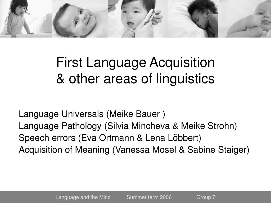 first language acquisition other areas of linguistics l.