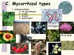 c mycorrhizal types