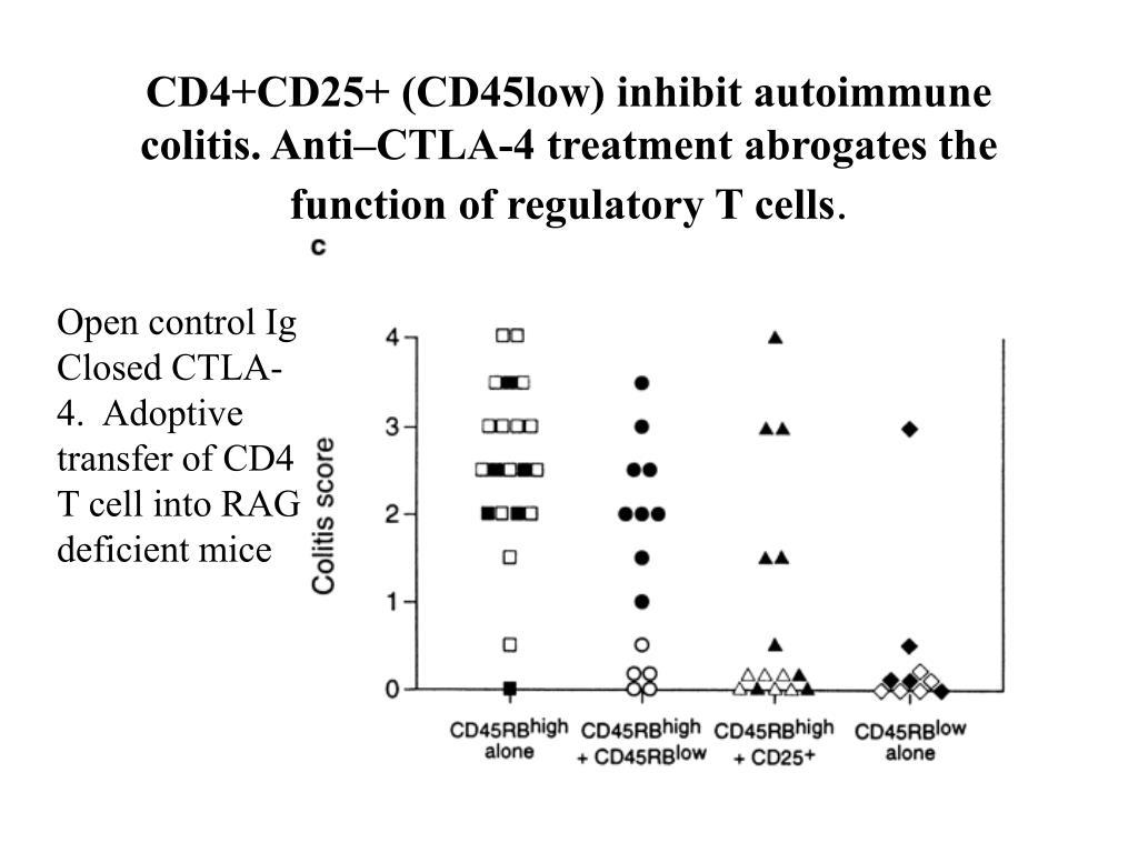 CD4+CD25+ (CD45low) inhibit autoimmune colitis. Anti–CTLA-4 treatment abrogates the function of regulatory T cells