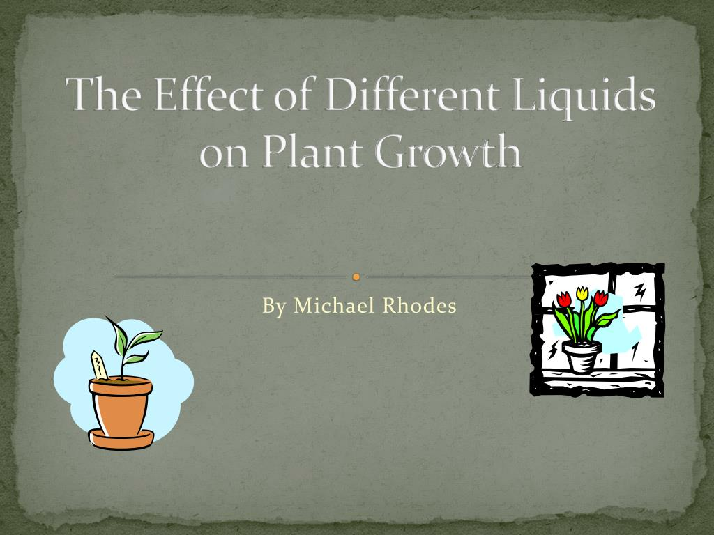 the effect of different liquids on plant growth l.