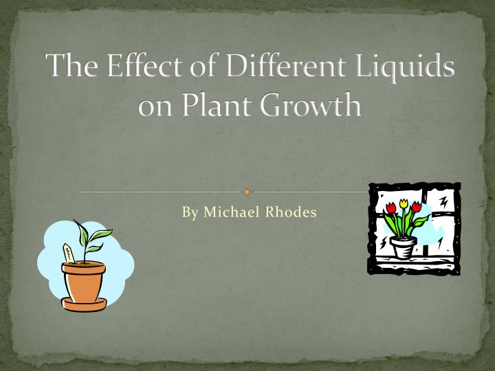 the effect of different liquids on plant growth n.