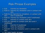 risk phrase examples