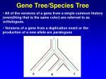 gene tree species tree38
