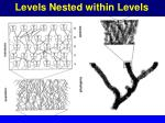 levels nested within levels