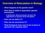 overview of reticulation in biology