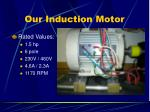 our induction motor
