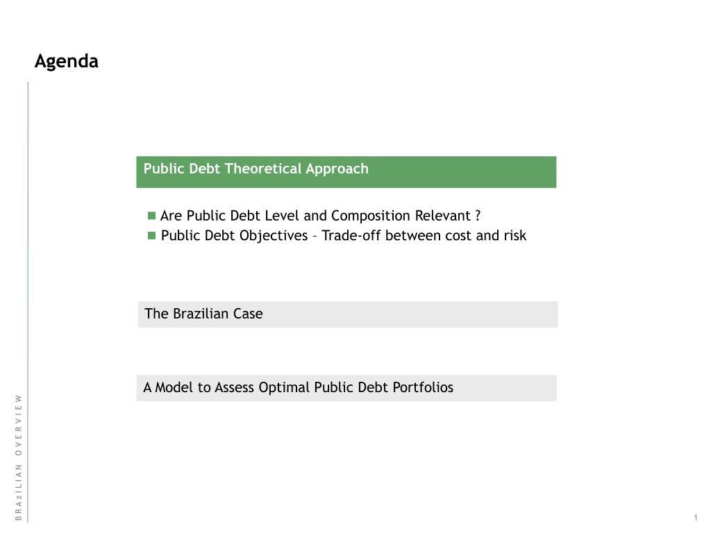 Public Debt Theoretical Approach