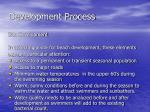development process6