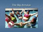 the big annulus