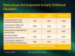 many issues are important to early childhood educators
