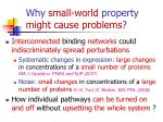 why small world property might cause problems