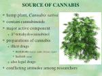 source of cannabis