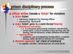 prison disciplinary process