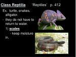 class reptilia reptiles p 412