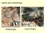 some are venomous