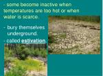 some become inactive when temperatures are too hot or when water is scarce