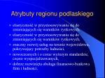 atrybuty regionu podlaskiego19