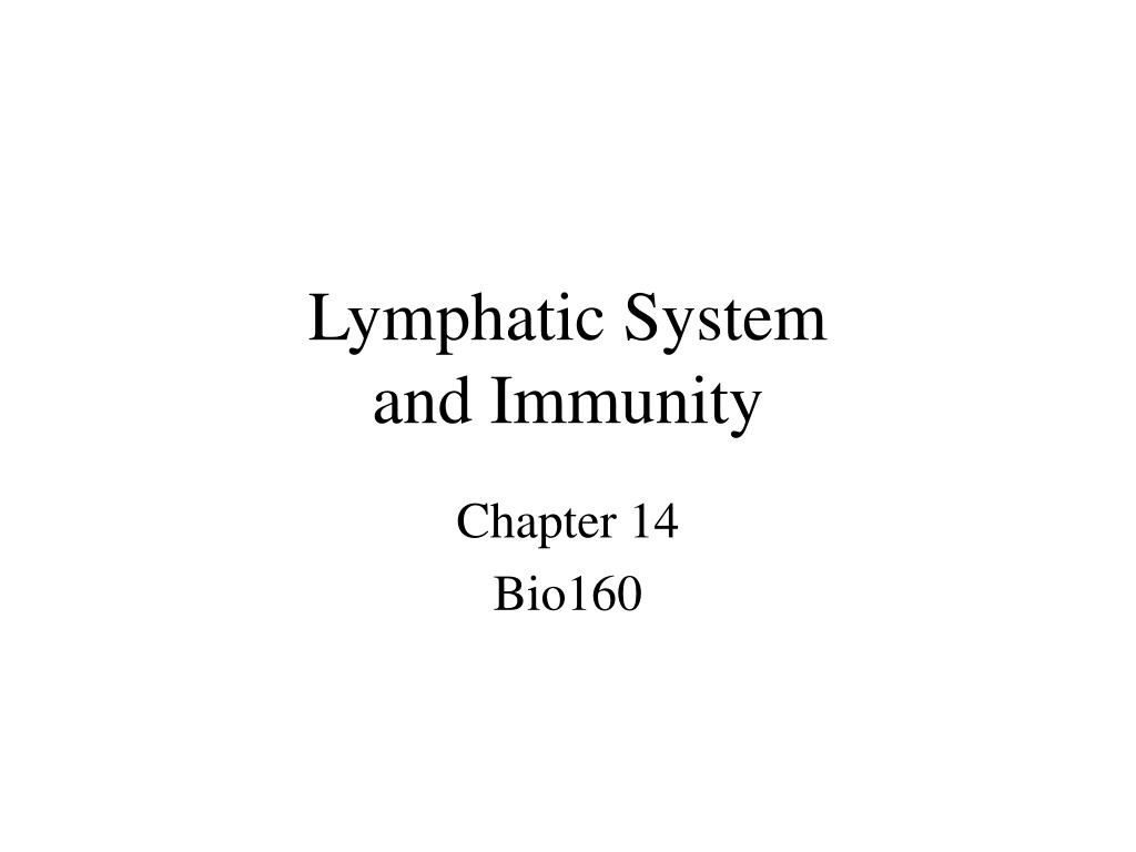 lymphatic system and immunity l.