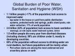 global burden of poor water sanitation and hygiene wsh