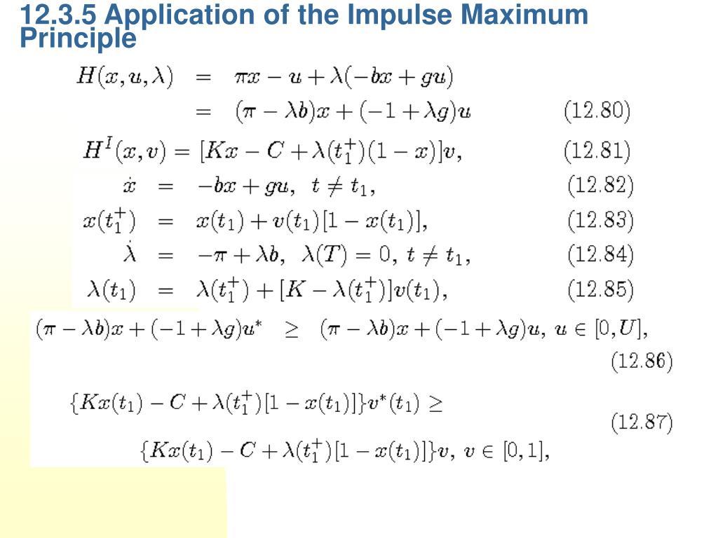 12.3.5 Application of the Impulse Maximum Principle