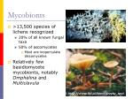 mycobionts
