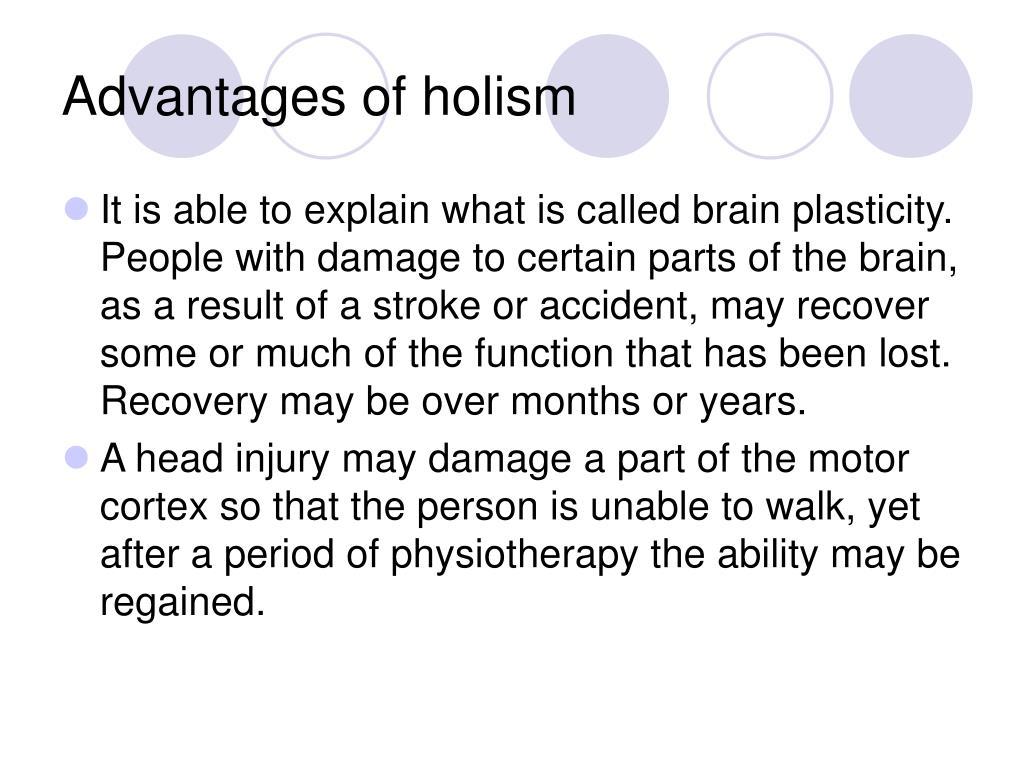 Advantages of holism