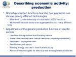 describing economic activity production
