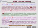 adm executive summary