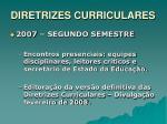 diretrizes curriculares13