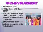 shg involvement