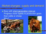 market changes supply and demand