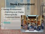 store environment