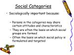social categories