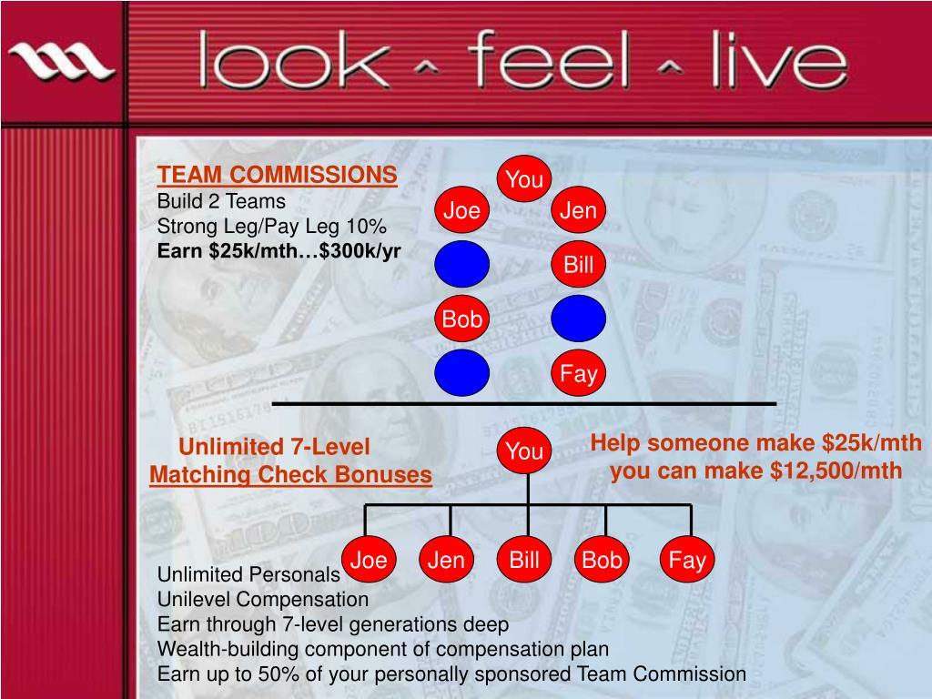 TEAM COMMISSIONS